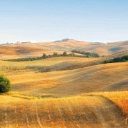 La Puglia e i doni della sua terra
